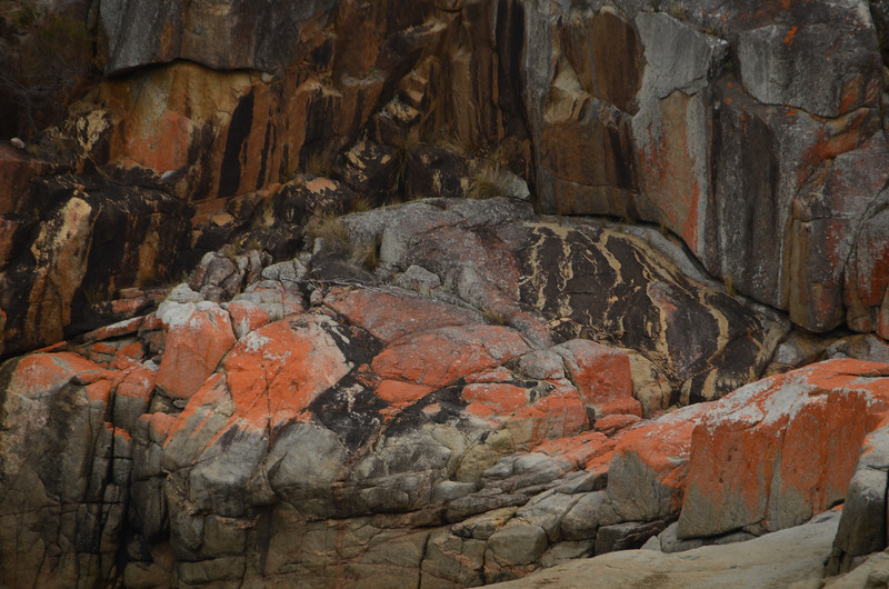 the distinct markings of the rock face (6)
