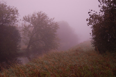2007, September Foggy Day