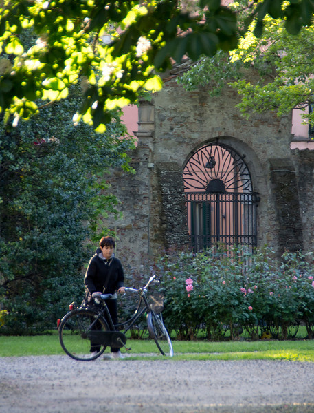 Lucca Courtyard -12.jpg