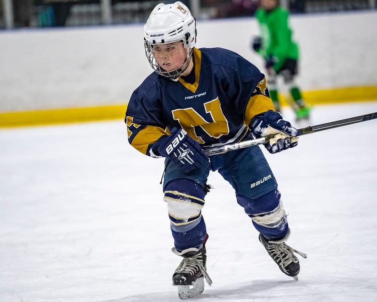 2019-02-03-Ryan-Naughton-Hockey-91.jpg