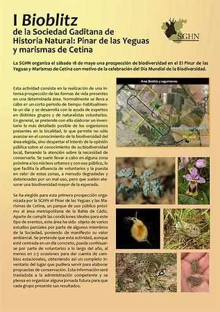 I Bioblitz. Dehesa de las Yeguas. Puerto Real