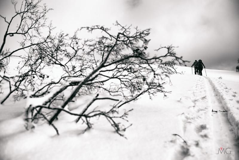 Skitour-Kirchenberg-17.jpg