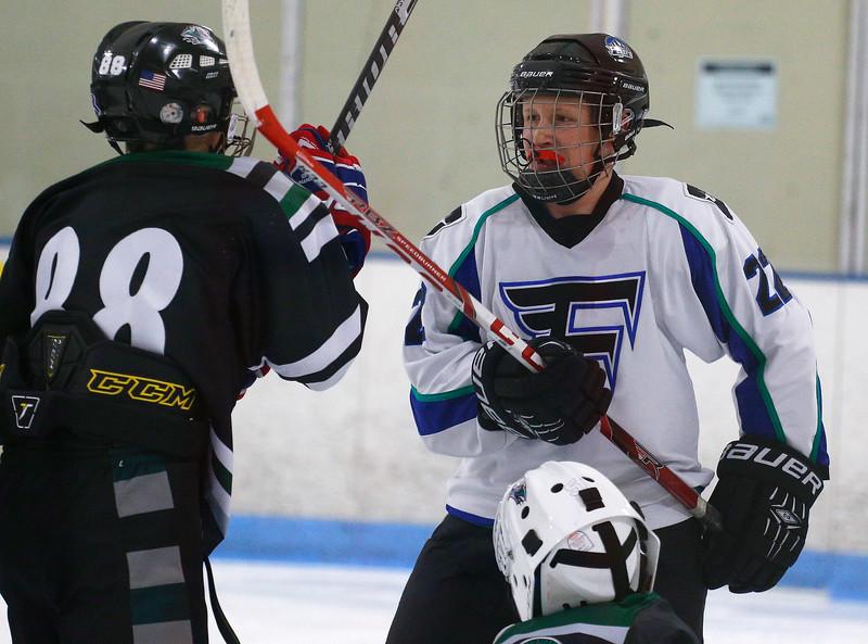 2016-Jan_29-Hockey-JPM0112.jpg