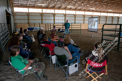 Mini Horse Driving Workshop at Pam's barn