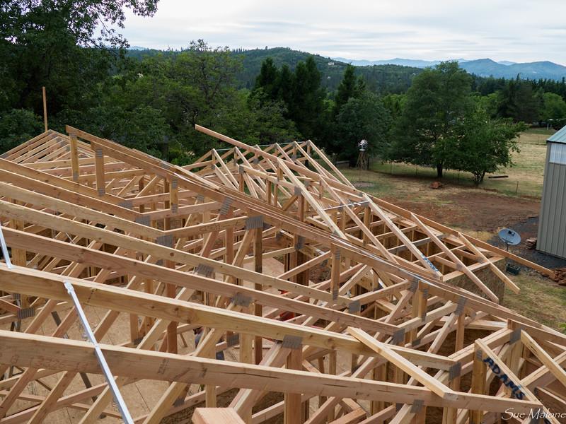 roof trusses (10 of 18).jpg