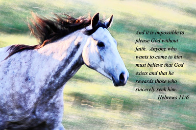 Horse Lovers Bible Verses