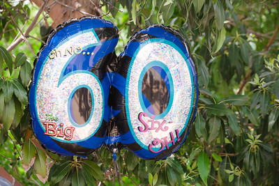 041016 - Barbara's 60th Birthday Celebration