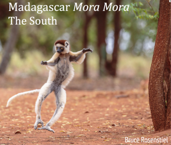 Madagascar South