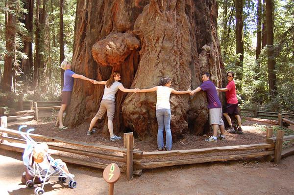 CA Visit 2008