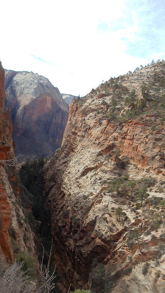 Zion National Park - Doug 136.JPG