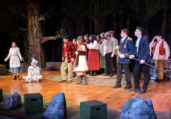 2017-2018 NHRHS Into the Woods print