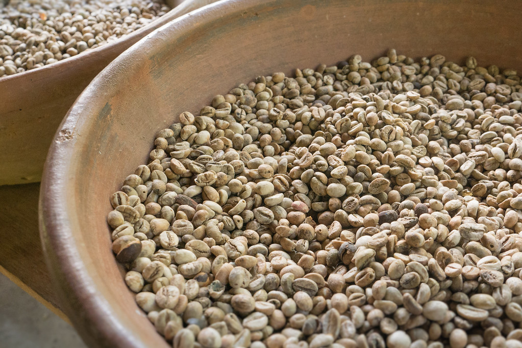 The outer parchment is removed from the coffee beans shown here.