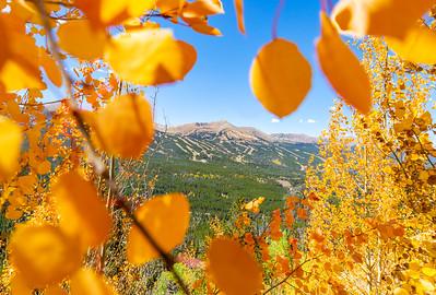 Colorado Autumn 9.12.18