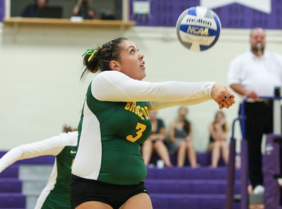 Women's Volleyball v. Nazareth Golden Flyers 9-11-13