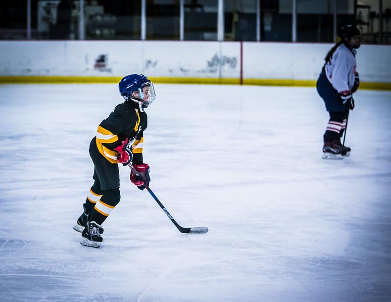 Bruins2-87.jpg