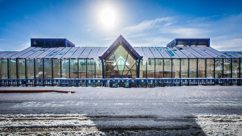 snowy-campus-jan2013-24.jpg