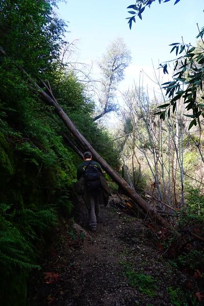 20160218050-Gabrielino Trail Scouting.JPG