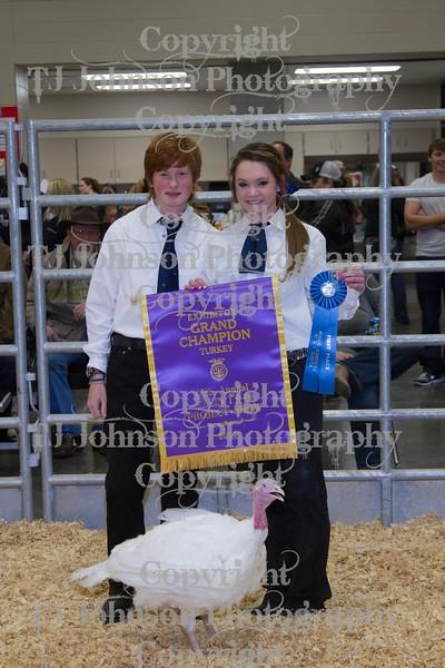 2014 KISD Livestock Show Grand and Reserve