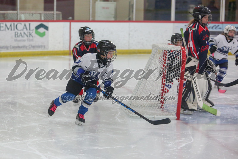 Blizzard Hockey 111719 6975.jpg