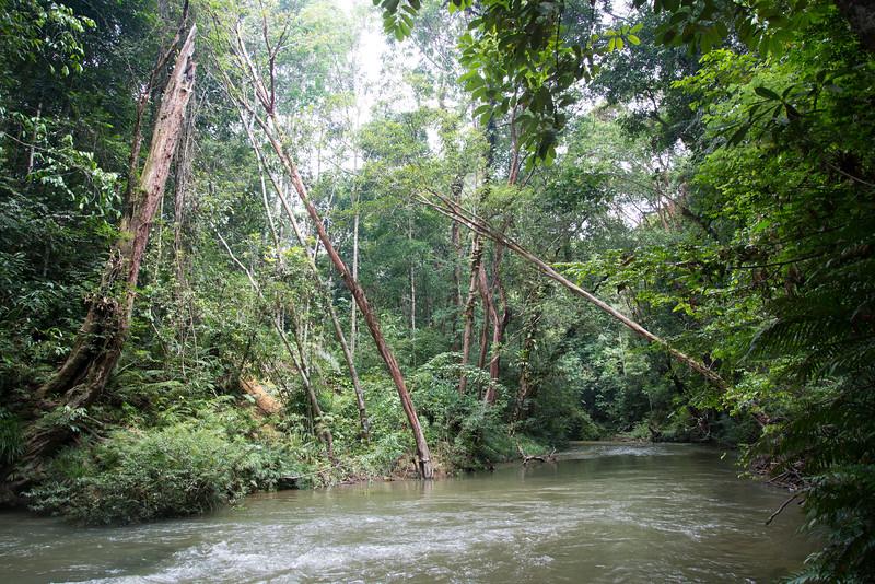 River Near Enseluai Waterfall