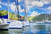 Beautiful tropical marina lined with luxurious sailboats and lush green mountains in the background.