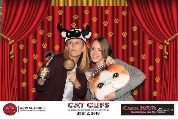 Cat Clips