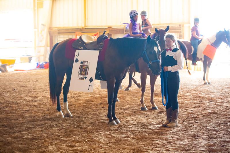 HorseCostume-46.jpg