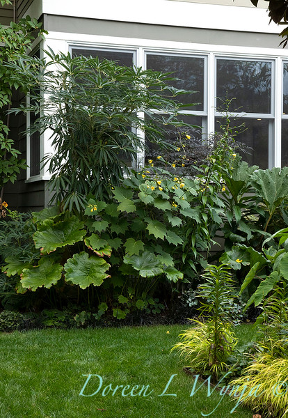 Lisa Bauer - designer's garden_1294.jpg