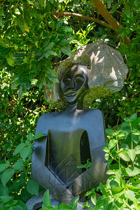 Kirstenbosch National Botanical_2000