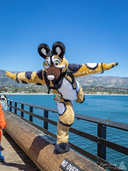 20190316-Santa Barbara Trolley Meetup 2019-3-16-97.jpg