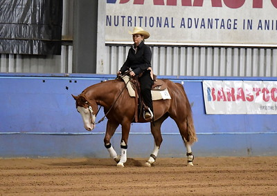 3 YEAR OLD FUTURITY . OPEN AND NON PRO