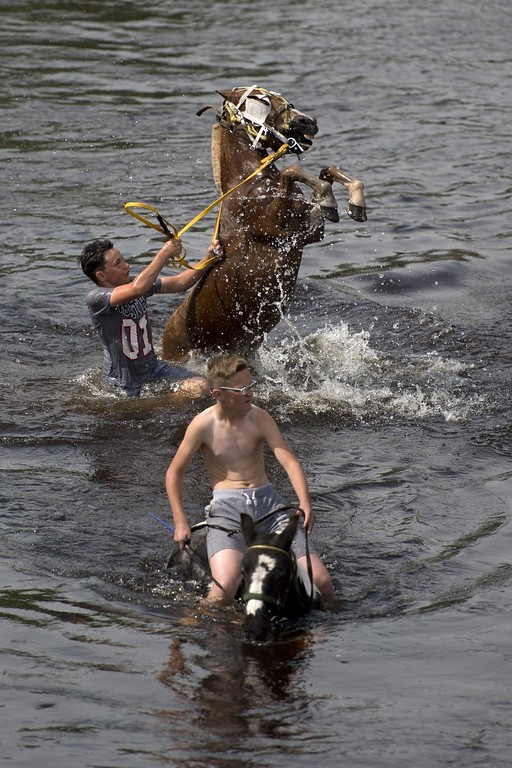 . Boys ride horses into the River Eden to wash them on the opening day of the annual Appleby Horse Fair, in the town of Appleby-in-Westmorland, North West England on June 4, 2015. The annual event attracts thousands of travelers from across Britain to gather and buy and sell horses. AFP PHOTO / OLI SCARFF/AFP/Getty Images