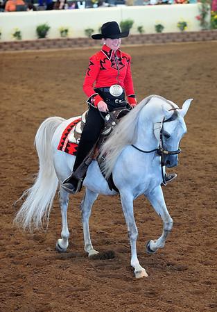 Scottsdale Arabian Horse Show 08