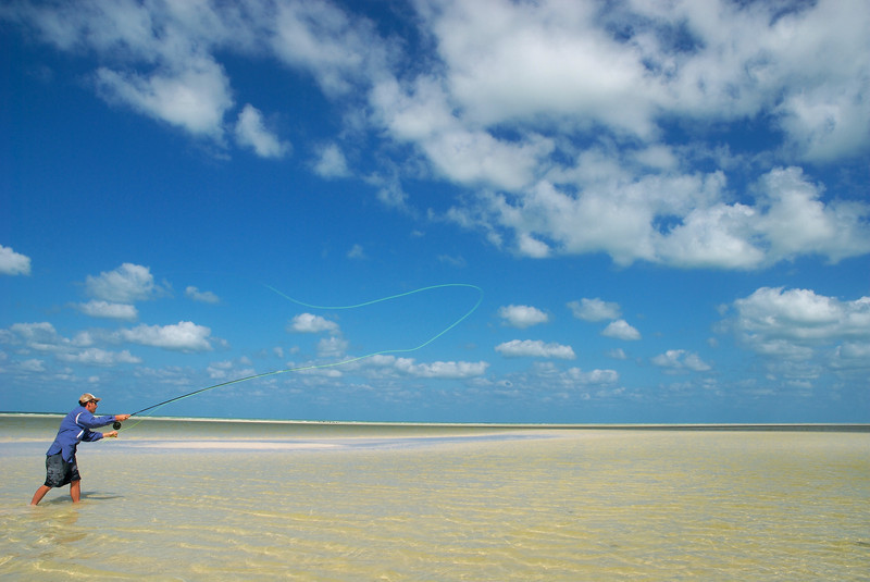 a fly fisherman casting to bonefish on isla holbox mexico
