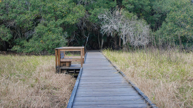 Myakka River Boylston Nature Trail