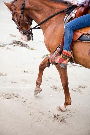 Horsey Ridin' FUN