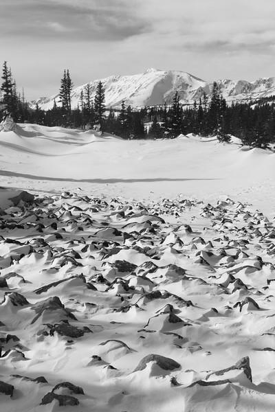 Snowy Wyoming
