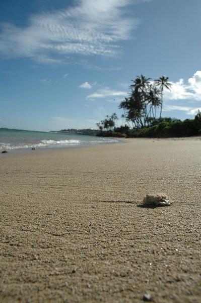 Hawaii - Kahala Beach-104.JPG