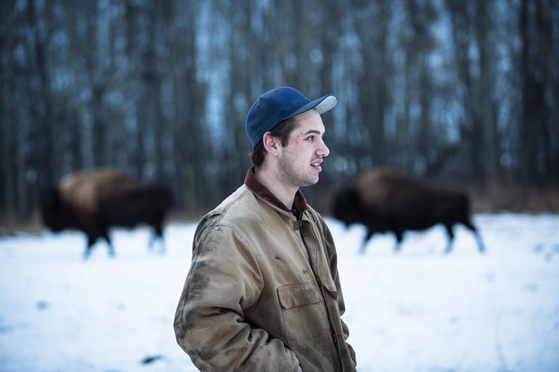 AHP171212_buffalo1541.jpg