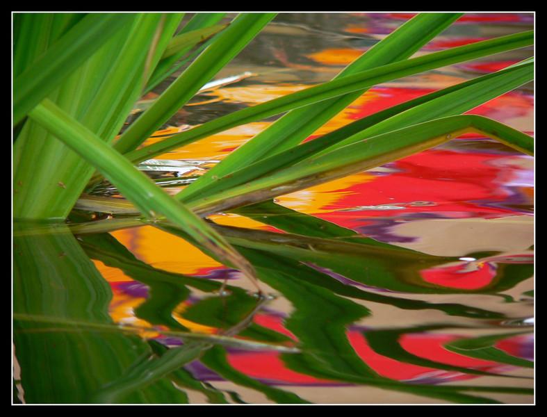 06FR23  La Bugue Acquario Perigord Noir 358.jpg
