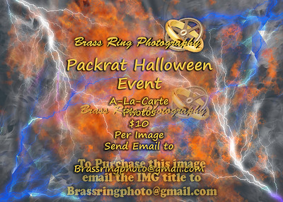 A-La-Carte 2016 Packrat Halloween