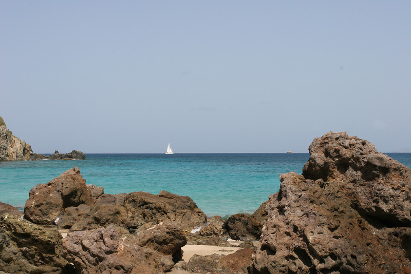 IMG_8454  colombier