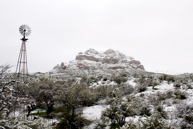 Snowy day at Picketpost Mountain (2019)
