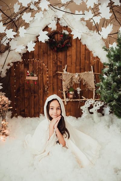Craciun 2019_Catalina Andrei Photography-26.jpg
