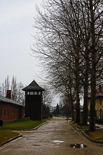 Auschwitz -Birkenau31.JPG