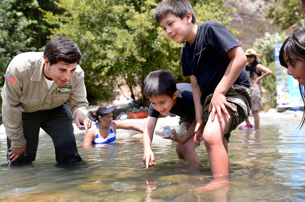 . In the San Gabriel River along the East Fork of the Angeles National Forest Supervisor Jimmy Larios, of the Urban Conservation Corps, shows Saturday, July 20, 2013 children the Santa Ana Sucker, a small fish that is listed as threatened. The Urban Conservation Corps is trying to educate visitors and campers on packing their trash out and breaking down dams for pools to avoid trapping the Santa Ana Sucker. Although the Urban Conservation Corps says their river trash count studies show less trash the area is still littered with garbage.  (SGVN/Staff Photo by Sarah Reingewirtz)