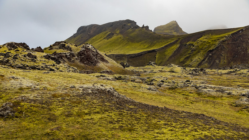 Iceland19_-1319.jpg