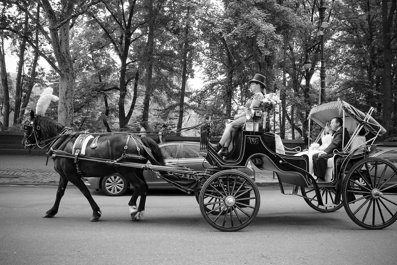 Caleb & Stephanie - Central Park Wedding-3.jpg