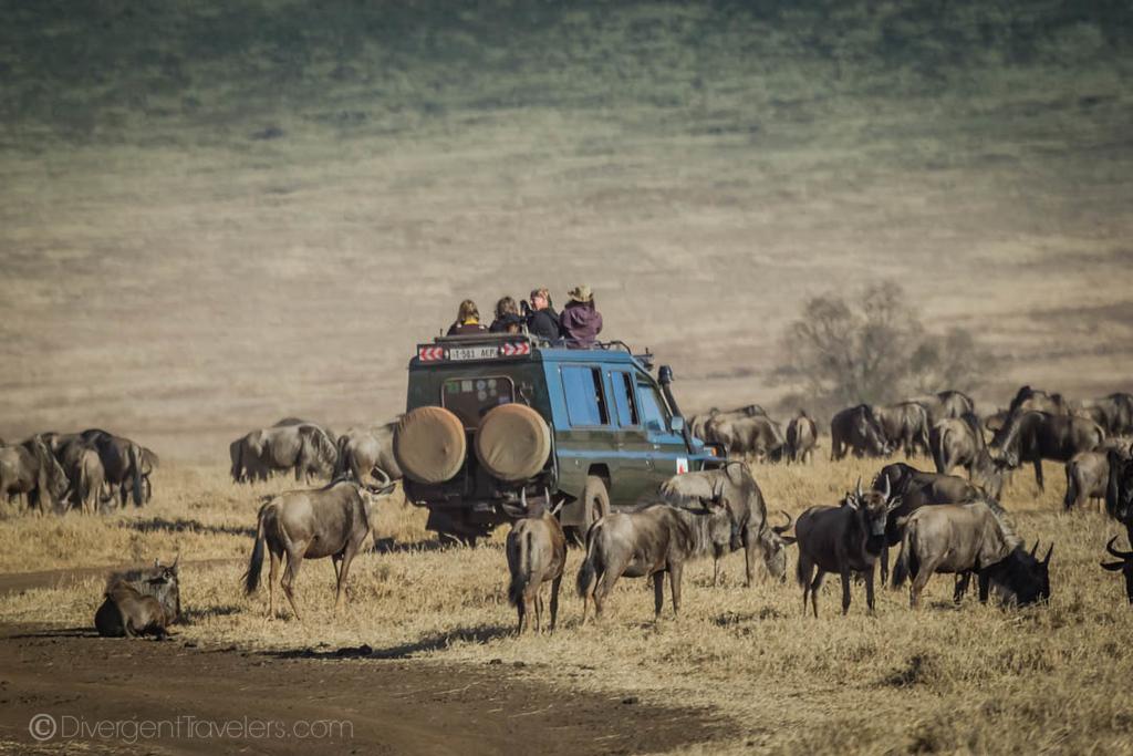 Ngorongoro Safari truck in Tanzania