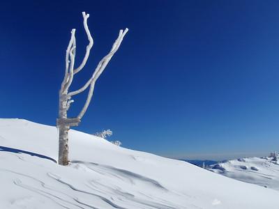 Velika planina - Feb 27, 2010